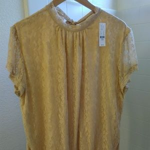 NY&C, brand new, tan colored blouse
